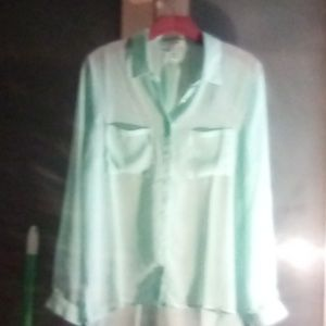 Beautiful sheer charmeuse colored shirt